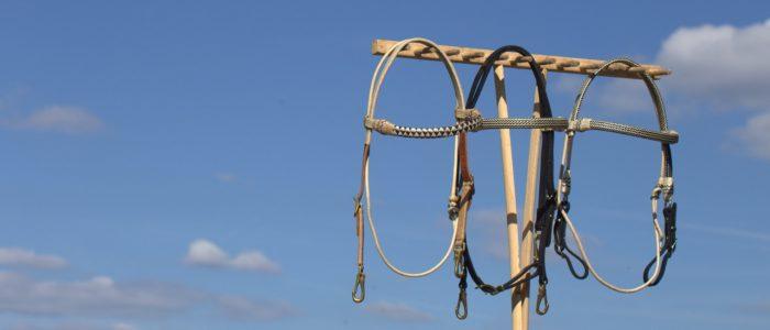 Exklusive Trensen - Kopfstücke in Handarbeit gefertigt